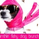 Sumthin' Fishy Drag Brunch + Dallas Pets Alive - March 8th