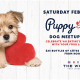 Puppy Love at The Wharf Fort Lauderdale