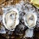 Oysters & Bubbles: Sweetheart Edition