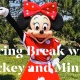 Spring Break Disney Night with Mickey & Minnie