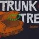 Trunk or Treat, Brandon, FL