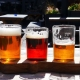 Curated Craft Carousel Beer Festival #4 - FTL