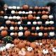 Mini Pumpkin Pots Virtual Workshop