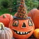 Pumpkin Painting Pop-Up Tampa