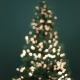Christmas Around the World Family Night
