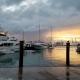 Thanksgiving Sunset Dolphin & Wildlife Cruise
