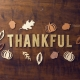 Lend A Helping Hand '10th' Thanksgiving Dinner
