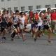 BDRC Christmas Eve Run/Walk @ Black Dog Running Company