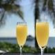 Vibes & Bottomless Mimosas @B.Nice Orlando