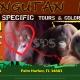 Celebrate International Orangutan Day!
