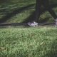 Sarasota-Manatee Walk to End Alzheimer's