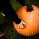 Pumpkin Patch Photo Sessions