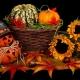 Halloween Forager Celebration !