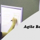 Agile 3 Days Bootcamp in Baltimore, MD