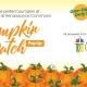 Pumpkin Patch Pop Up