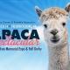 16th Annual Alpaca Spectacular: Sue Ives Memorial Expo + Fall Derby