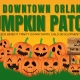 Downtown Orlando Pumpkin Patch