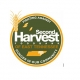 Christmas Networking Social & Second Harvest