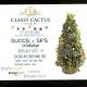 Succulent Christmas Tree Workshop