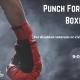 Punch for Veterans Boxing Class