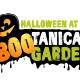 Halloween at the BOO-tanical Garden - Dog Night