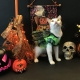 Halloween Event at Trueheart Haven by Milo's Sanctuary