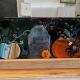 Halloween Pumpkin Panel Fused Glass Class