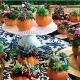 DIY Succulent Pumpkin