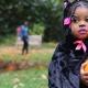 Stenton's Halloween Harvest Festival
