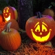 The Pumpkin Patch Trick or Treat
