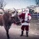 Old West Christmas Light Fest 2021 - Thursday Dec 16th