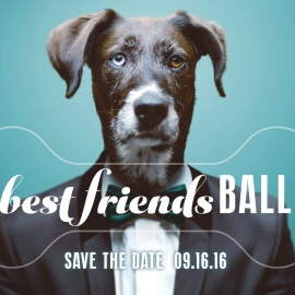 Best Friends Ball