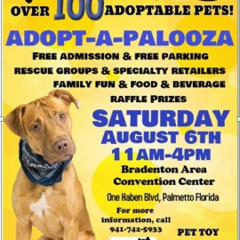 The 2nd Annual Adopt-A-Palooza