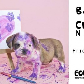 Barks And Crafts Night