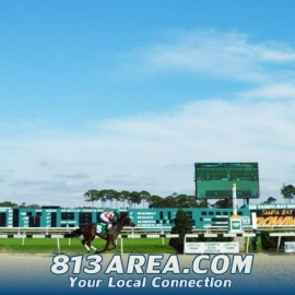 Live Racing is Back at Tampa Bay Downs