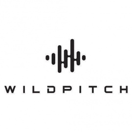 2nd Annual FREE NYE (With RSVP) Extravaganza at Wildpitch