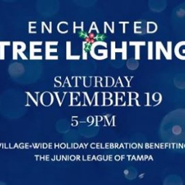 Enchanted Tree Lighting