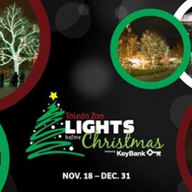 Lights Before Christmas Opening Night presented by Keybank