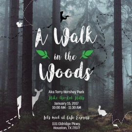 BCO - A Walk in the Woods