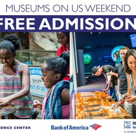 Bank Of America Museums On Us Weekend   Orlando Science Center