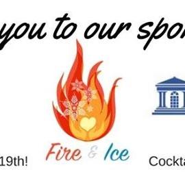 Fire & Ice 2017