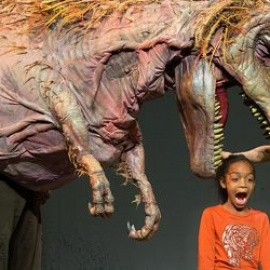 Erth's Dinosaur Zoo | Dr. Phillips Center For The Performing Arts