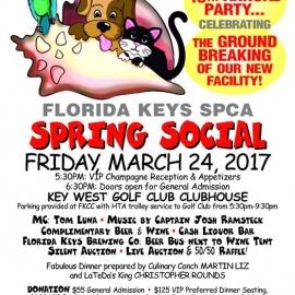 10th Annual Spring Social