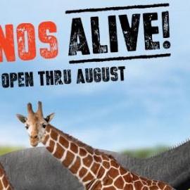 Dinos Alive   Lowry Park Zoo