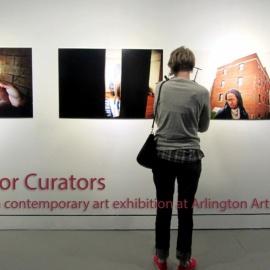 Curator Spotlight