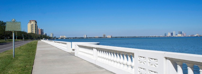 South Tampa cover image