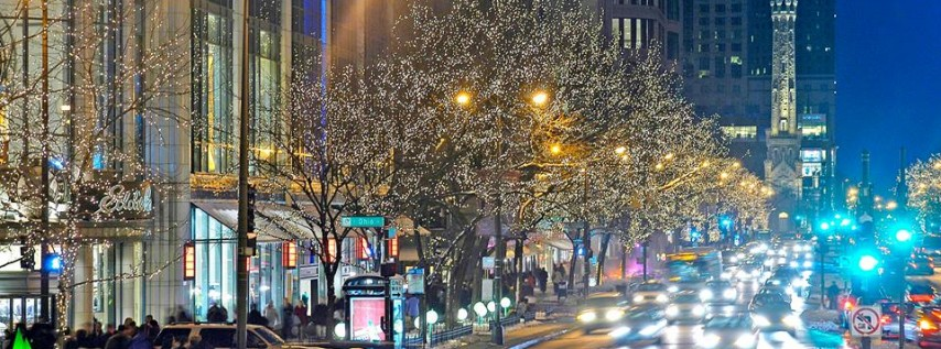 Magnificent Mile cover image