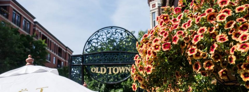Old Town cover image