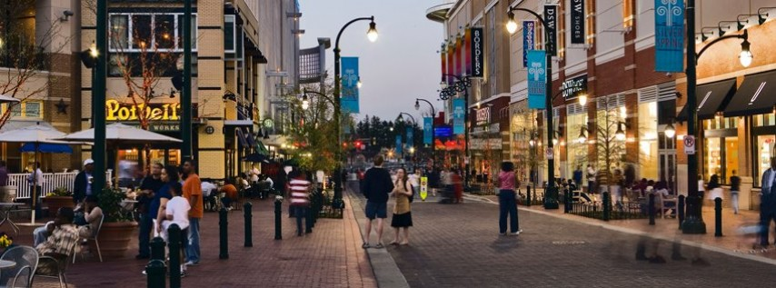 Silver Spring cover image