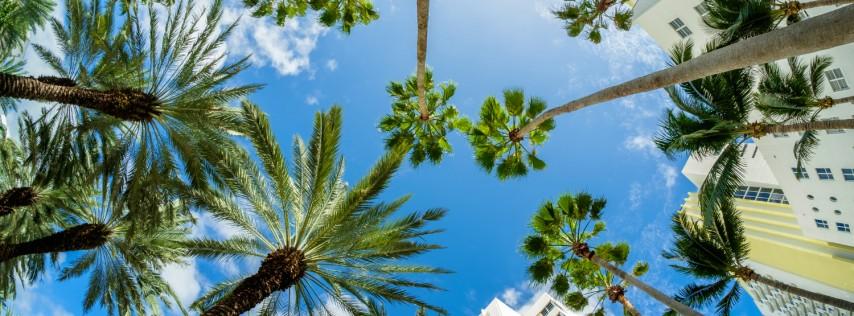 Miami Beach cover image